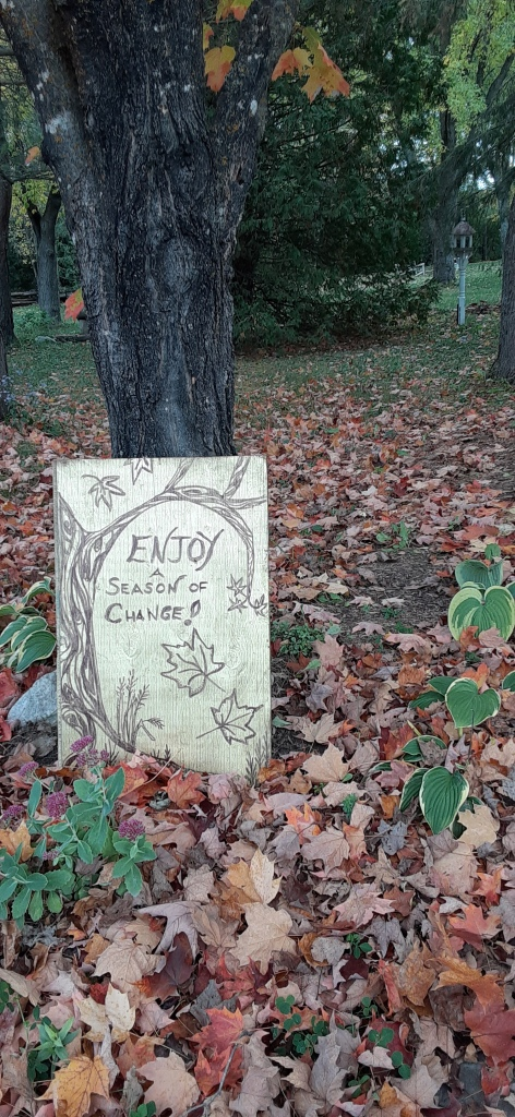 Painted signpost against a tree saying: Enjoy a season of change!