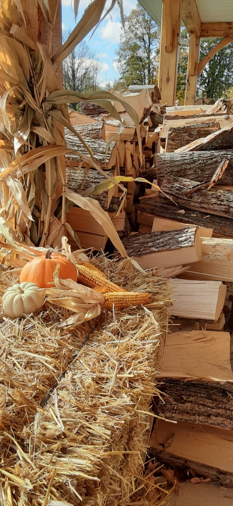 Wood piles with hay and pumpkins